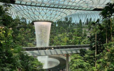 Design as A Career Choice? Singapore as a Career Destination?